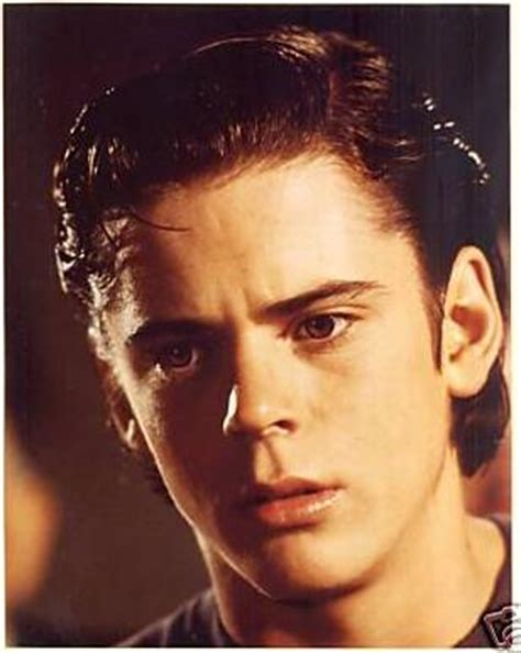 Stay Gold, Pony Boy on Pinterest   The Outsiders, Stay