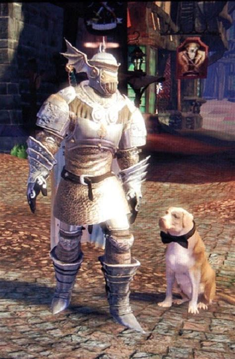 Knothole Knight Armour | The Fable Wiki | Fandom powered
