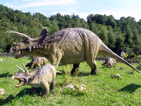 """GC4AKMR PT Dos Dinos 6 """"Triceratops"""" (Traditional Cache"""