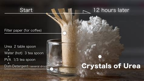 grow up Crystals of Urea(Carbamide) time lapse video and