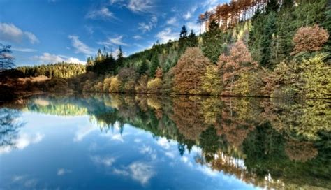 Dalby Forest, North Yorkshire - Go Explore!