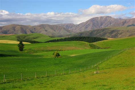 Rolling Hills of NZ   I've been umming and ahhing over